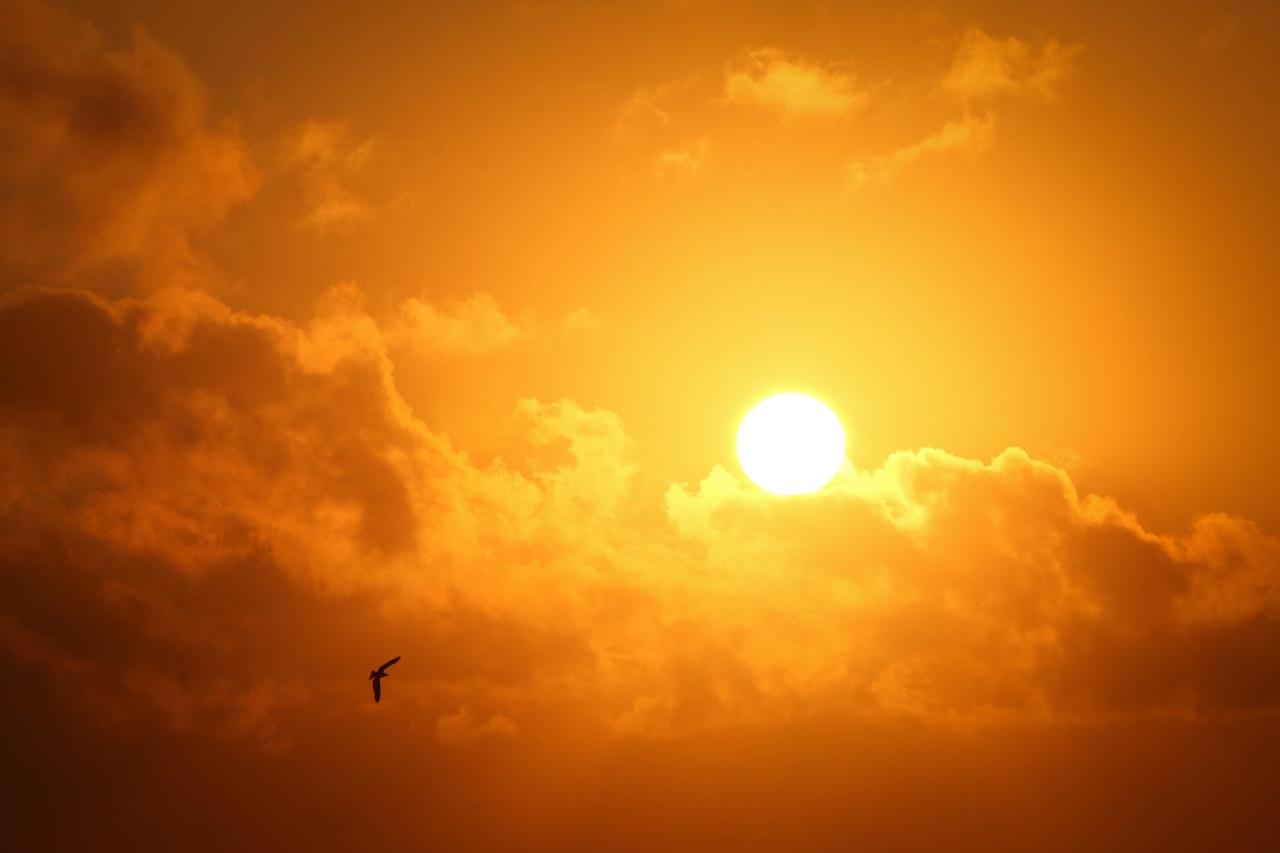 Nowoczesne membrany chronią dach przed promieniowaniem UV